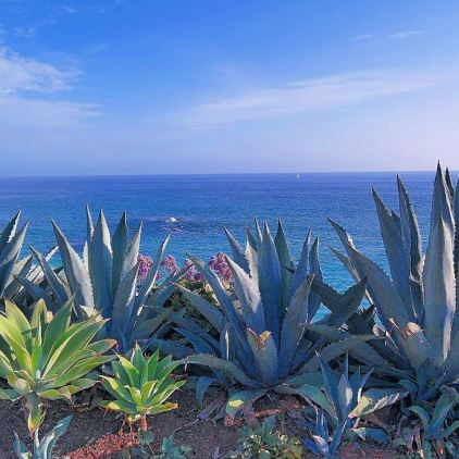 Laguna Beach Ocean view