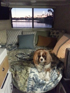 The view out the window at dusk. RV space # 52. Mission Bay RV Park.