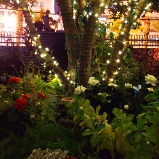 The Back Patio at Park on Fremont