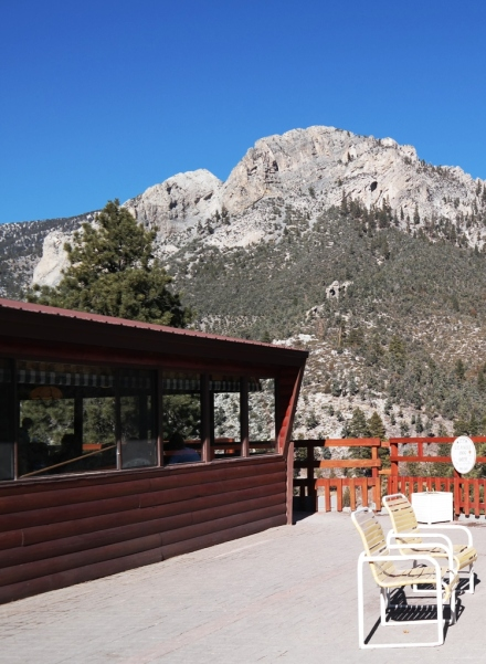 Mt. Charleston Lodge