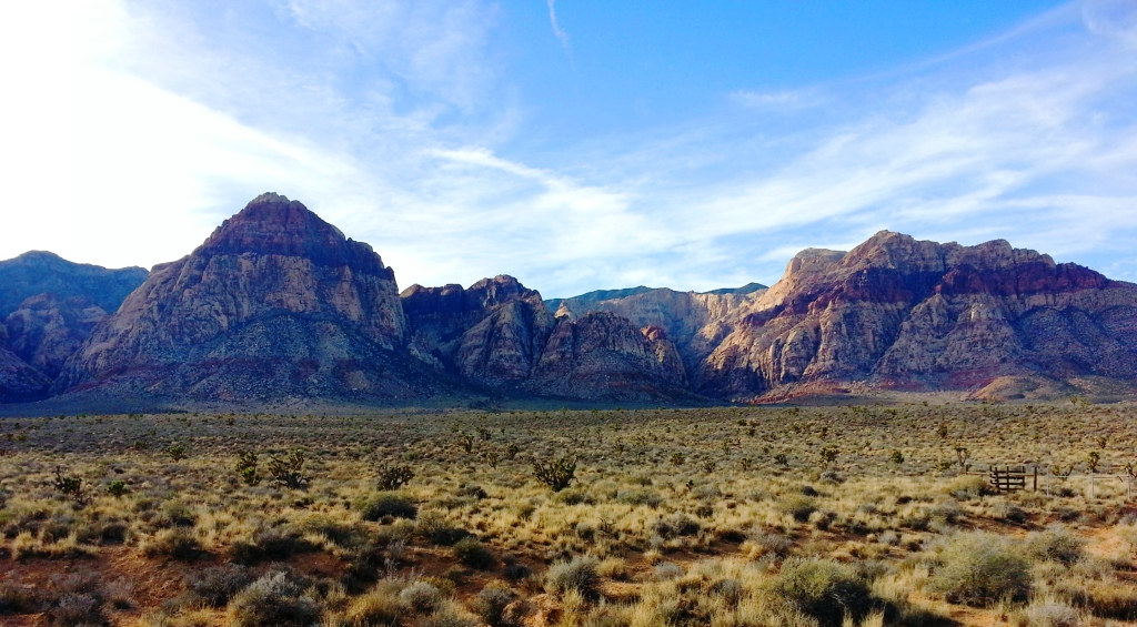 Gorgeous Red Rock Canyon