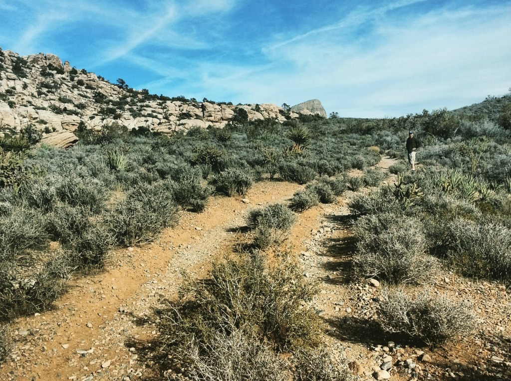 Trail at Red Rock Canyon Las Vegas -