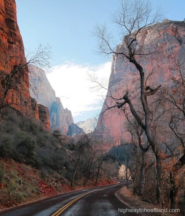 A winding road inside Zion National Park -