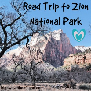 Beauty in Zion National Park - Cover