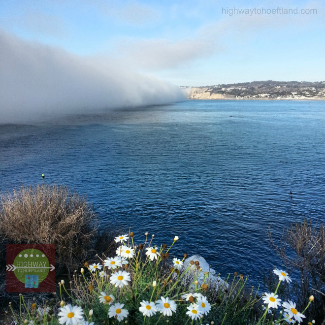 Fog in La Jolla barreling towards the shore.