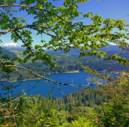 The view of Lake Merwin from LMCH