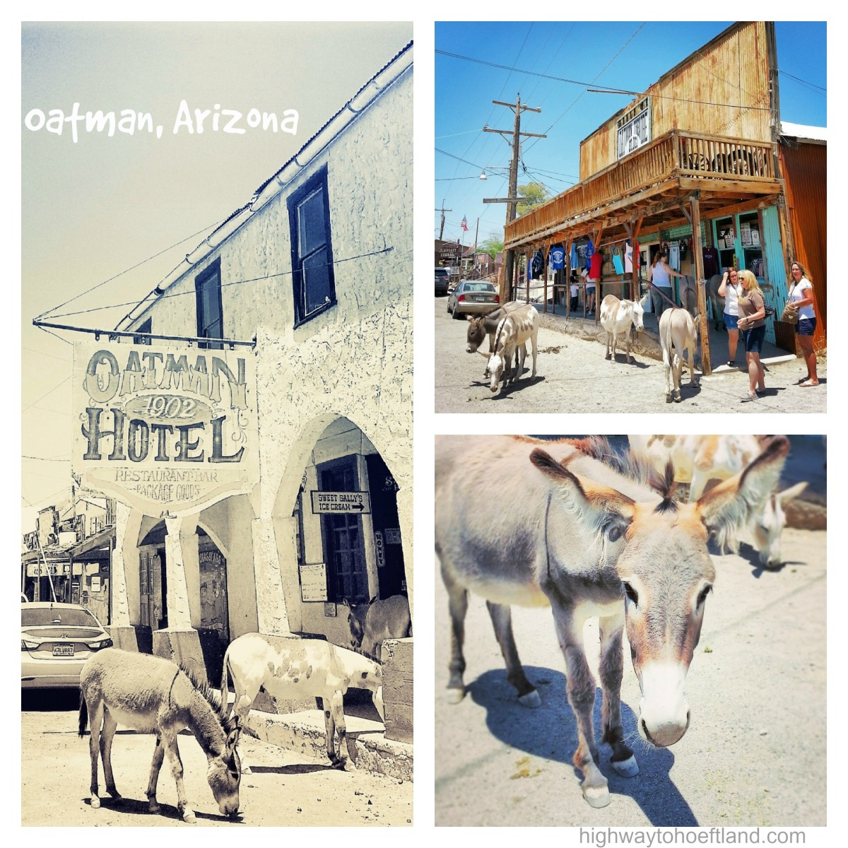 Old Western Charm and Burros Galore in Oatman, Arizona