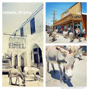 Exploring the burro-filled town of Oatman, AZ.