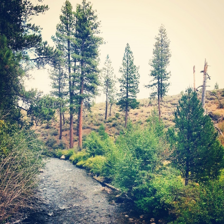 Pictures of Central Oregon.